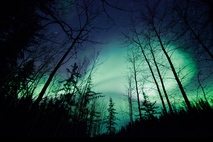 www.letsbewild.com - Aurora Borealis - Photo by Thomas Koidhis