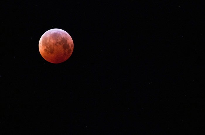 www.letsbewild.com - 2011 Lunar Eclipse - Photo by Thomas Koidhis