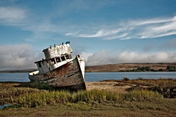 Photo of the Day - www.letsbewild.com - Point Reyes - Lisa Wilkerson Willis