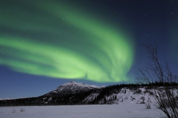 Photo of the Day - www.letsbewild.com - Northern Lights over Alaska - Cindy Grant