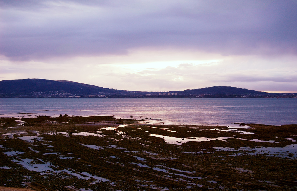 Photo of the Day - www.letsbewild.com - Belfast Lough - Tracy Zhang