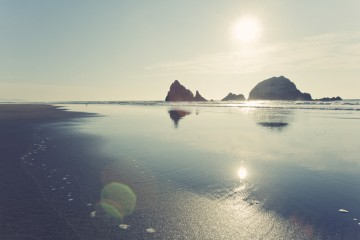 Photo of the Day - www.letsbewild.com - Seal Rocks, San Francisco, California - Nick Zantop