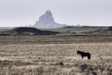 Adventure Travel Photo of the Day - www.letsbewild.com - The Lone Horse, Monument Valley, Arizona - Utah border, United States - Gord Parrott