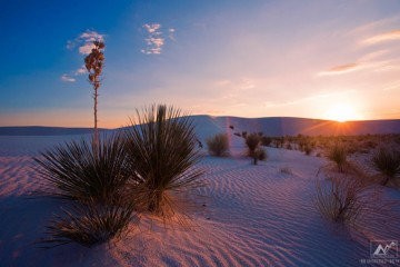 www.letsbewild.com - An Adventure Travel Magazine: Weekly Wallpaper - White Sands New Mexico