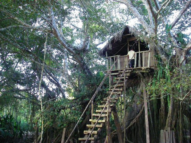 www.letsbewild.com - Adventure Travel - Tingana Ecolodge: Adventures in the High Jungle of Peru - James Lantz