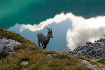 Adventure Travel Photo of the Day - www.letsbewild.com - In the Window of Heaven and Earth, Lac Blanc, Chamonix-Mont-Blanc, Haute-Savoie, France - Yuzuru Masuda