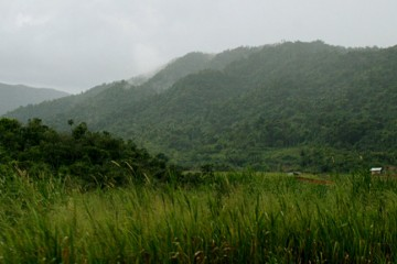 The Agricultural Frontier, near Middlesex, Hummingbird Highway, Stann Creek District, Belize - Adam Lloyd