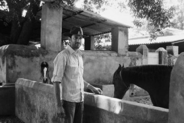 The Legendary Bhavani Villa Marwari Stud Farm of Danta, India