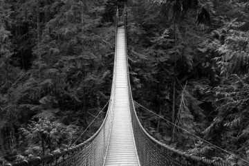 Adventure Travel Photo of the Day - Suspended, Lynn Canyon Suspension Bridge, North Vancouver, British Columbia, Canada - Megan Hockin-Bennett