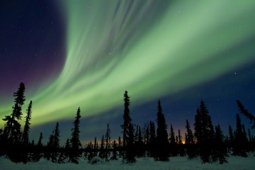 Aurora Borealis over Trapper Creek, Alaska