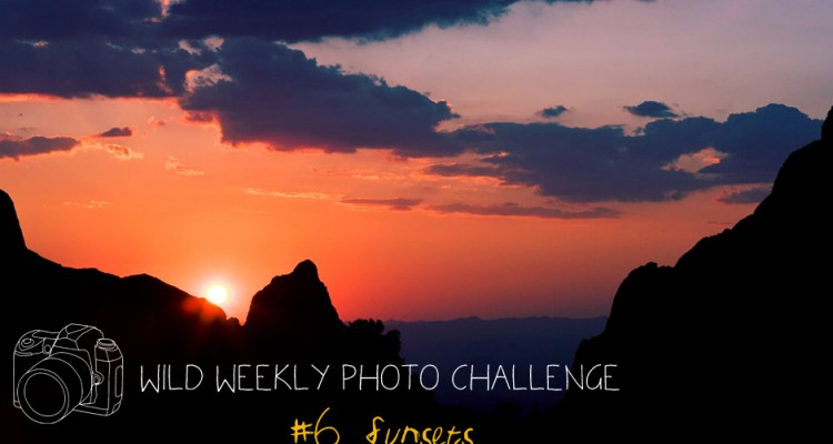 Wild Weekly Photo Challenge for Bloggers - #6 - Sunsets