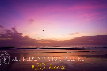 Wild Weekly Photo Challenge - Sunrise