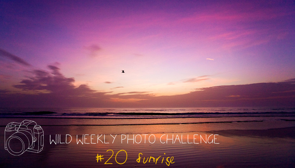 Wild Weekly Photo Challenge #19 - Wanderlust!