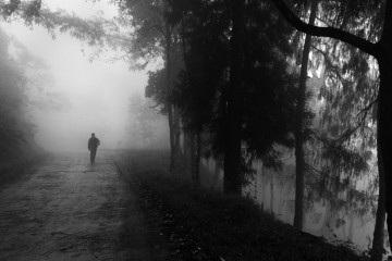 Photo of the Day: Lost in the Mist