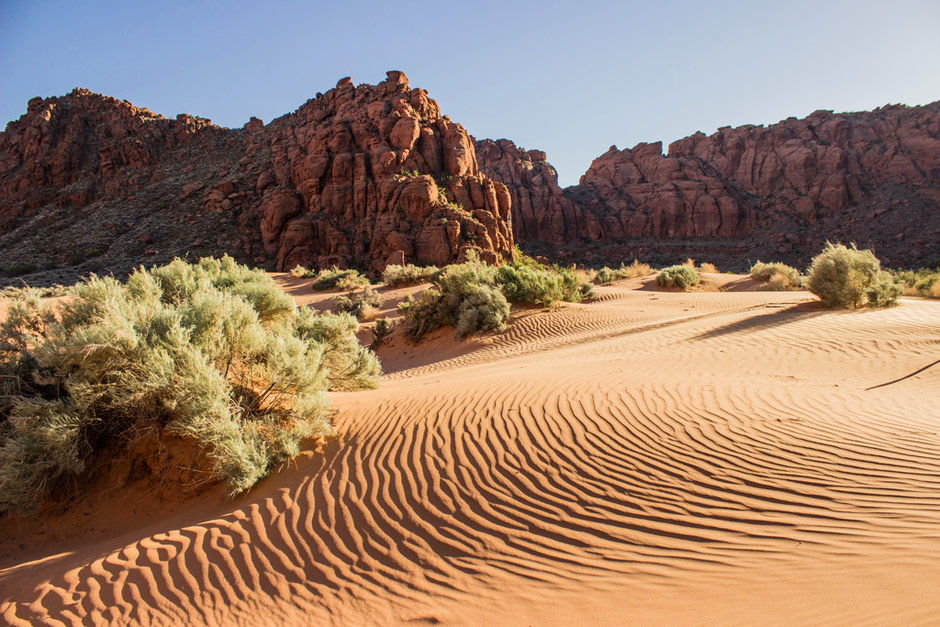 Photo of the Day: Snow Canyon State Park