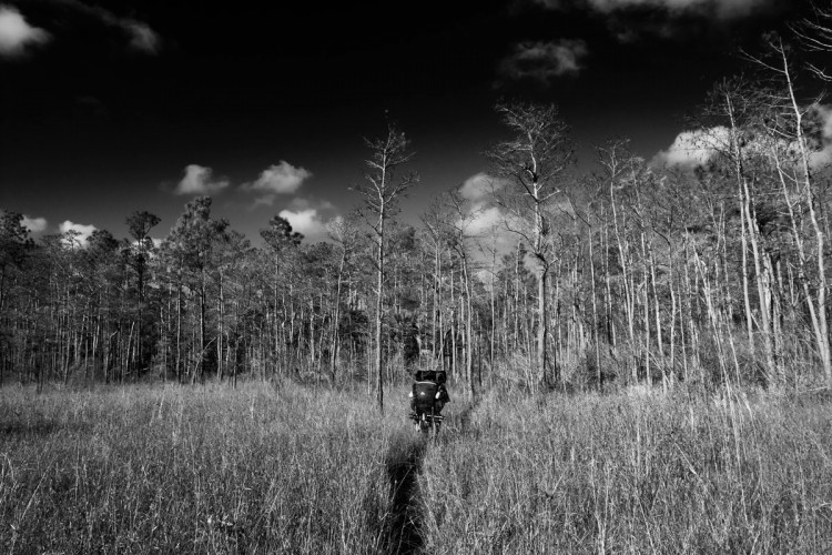 True Ground Beneath my Feet: Backpacking in the Florida Everglades